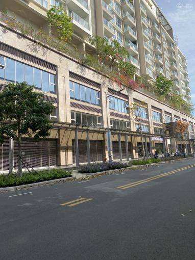 Bán sốt dẻo căn hộ thương mại Sarina thuộc khu đô thị Sala ảnh 0