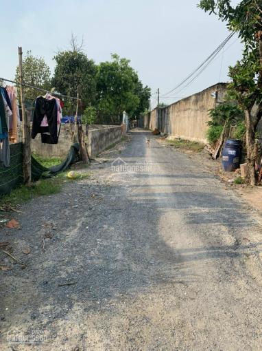 Cần bán đất 1 sẹc đường Nguyễn Kim Cương ảnh 0
