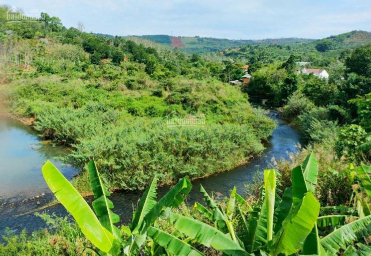 Chuyên bán đất công diện tích lớn, chỉ 350tr/1hec, tại TP.Gia Nghĩa, DăkNong, SHR 0933051081 ảnh 0