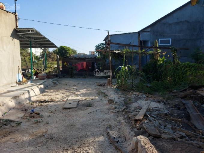 Bán đất tại trung tâm huyện Ninh Phước, Ninh Thuận ảnh 0