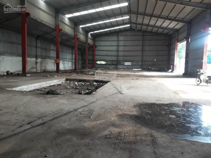 Cho thuê xưởng An Phú Đông, quận 12. DT 4800m2, giá cực sốc dịp lễ, LH ngay 0902355344 ảnh 0