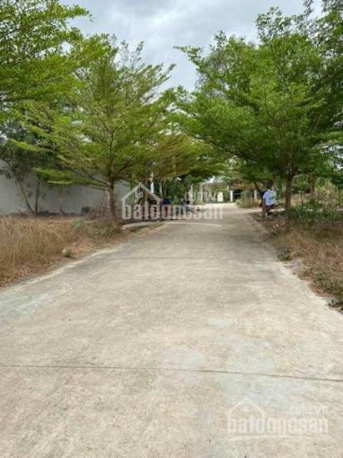 VIB thanh lý lô đất tại phường Tân Định đối diện khu công nghiệp ảnh 0