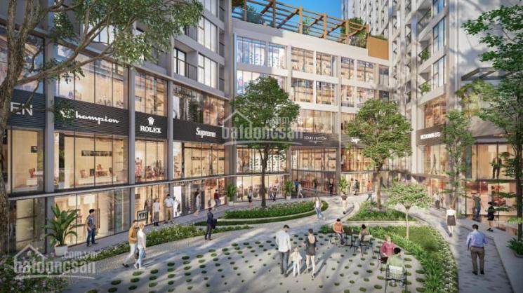 Ra mắt 8 shophouse siêu phẩm kinh doanh trung tâm quảng trường, khối đế Ecoriver, LH 0946.455.685 ảnh 0