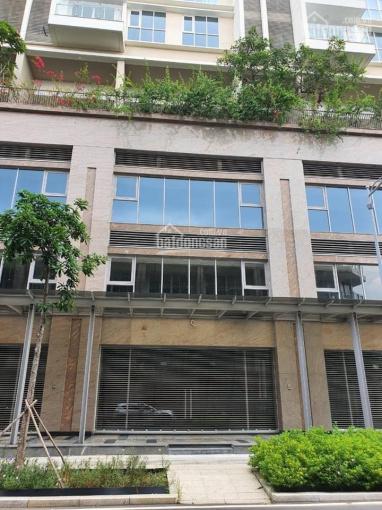 Cần bán căn Shophouse thuộc Khối đế Sarina giá 29,5 tỷ đối diện dãy văn phòng LH 0909246874 ảnh 0
