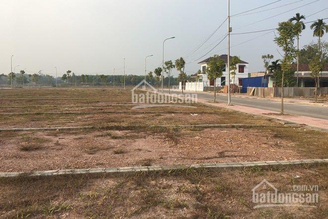 Chuyển chỗ ở mới cần bán gấp lô đất xã Long Tân Phú Hội. Liên hệ: 0788794146 ảnh 0