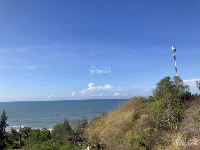 Bán gấp 2 căn 1pn Ocean Vista lầu 5 view biển trực diện căn thường và căn góc ảnh 0