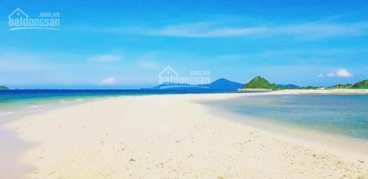 Đất mặt biển giá chỉ 4tr/m2 tại KKT Bắc Vân Phong, Khánh Hoà ảnh 0