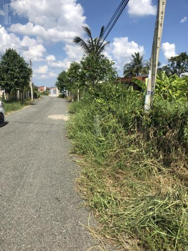 Bán đất mặt tiền Trần Văn Ngà TP Tân An (26m mặt lộ) giá cực tốt chưa qua đầu tư. LH 0909480087 ảnh 0