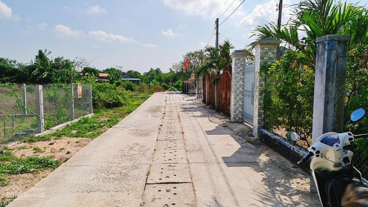 Bán đất Phước Trinh Tam Phước, Long Điền, Bà Rịa Vũng Tàu, DT 350m2 ảnh 0