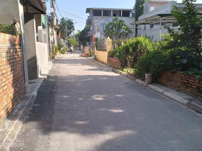 60m2 Kim Sơn, mặt tiền 5m, đường 4m, giá 1,38 tỷ ảnh 0
