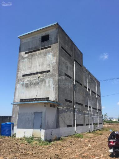 Chính chủ cần bán gấp nhà yến và đất tại mặt tiền Tỉnh lộ 877, Gò Công giá rẻ ảnh 0
