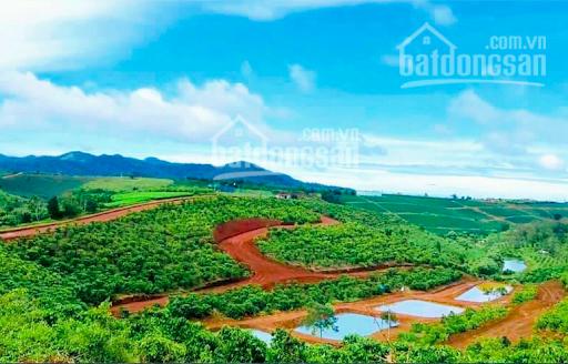 Cần tiền kinh doanh tôi bán lỗ 100tr lô đất giá chỉ 750 triệu, view cao rất đẹp. Miễn tiếp môi giới ảnh 0