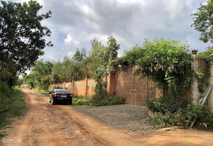 Bán đất vườn 40x50m Quốc Lộ 20, Định Quán, Đồng Nai, giá 699 triệu ảnh 0