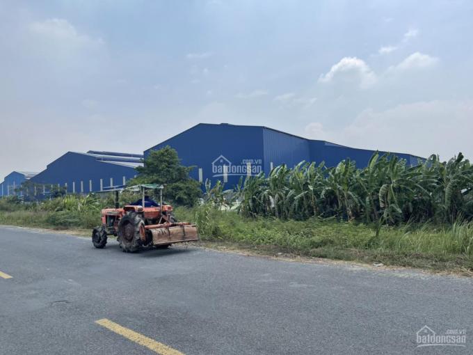 Bán đất tại ĐT 852B, Xã Bình Thạnh Trung, huyện Lấp Vò, tỉnh Đồng Tháp - 05/2021 ảnh 0