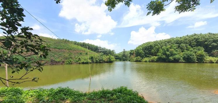 Cơ hội sở hữu ngay 3.100m2 đất thổ cư view hồ tại Lạc Thủy, Hòa Bình ảnh 0