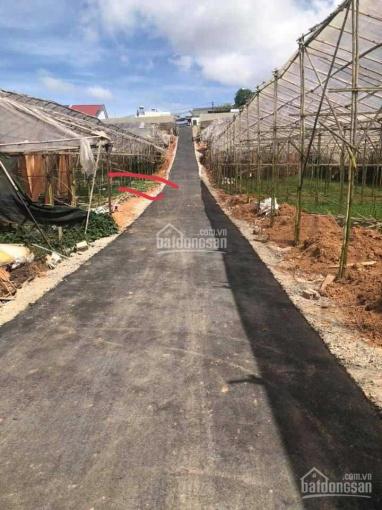 Bán 200m2 đất sổ riêng xây dựng đường Thái Phiên. View nhìn núi cực thoáng ảnh 0