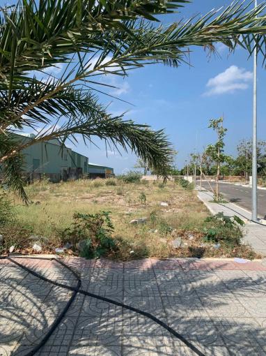 Mua đất tặng nhà, ngay mặt tiền Tỉnh Lộ 44A, cách TTHC Bà Rịa 2.5km ảnh 0