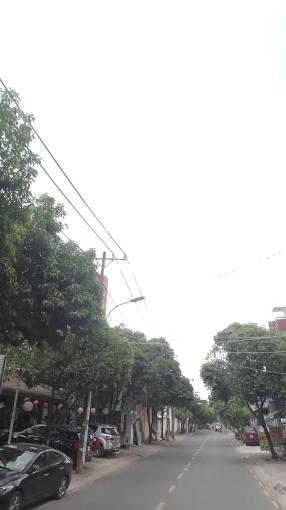 Bán đất MT Quang Trung, Hiệp Phú, Q9, cách đường Phan Chu Trinh 300m, đã có sổ, XD tự do ảnh 0