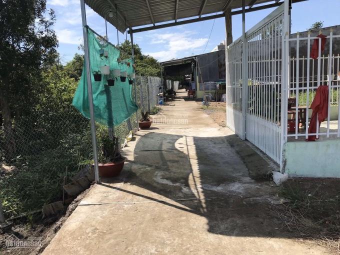 Đất ruộng xã Mỹ Trà, TP Cao Lãnh, Đồng Tháp ảnh 0