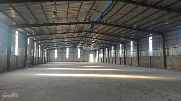 Cho thuê 1000m2 nhà xưởng hiện đại ở Thường Tín, Hà Nội ảnh 0