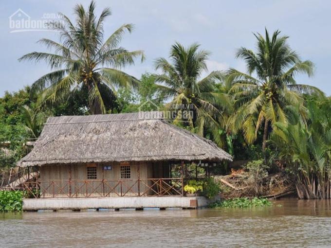 Đất Nhơn Trạch, ven sông đường xe hơi cách Sài Gòn 8km ảnh 0