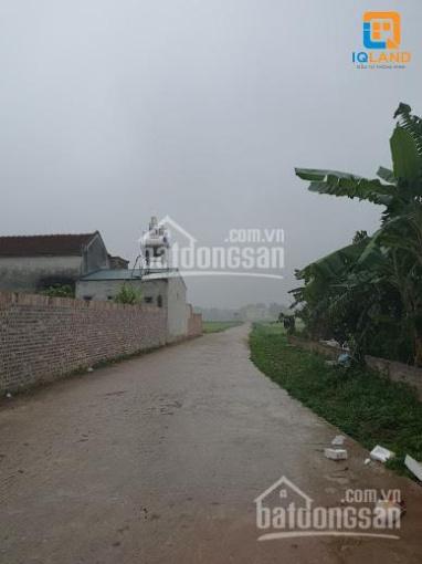 Chính chủ cần bán 60m2 đất tặng nhà 1 tầng tại Đông Lai, Quang Tiến, Sóc Sơn. LH: 0982672729 ảnh 0