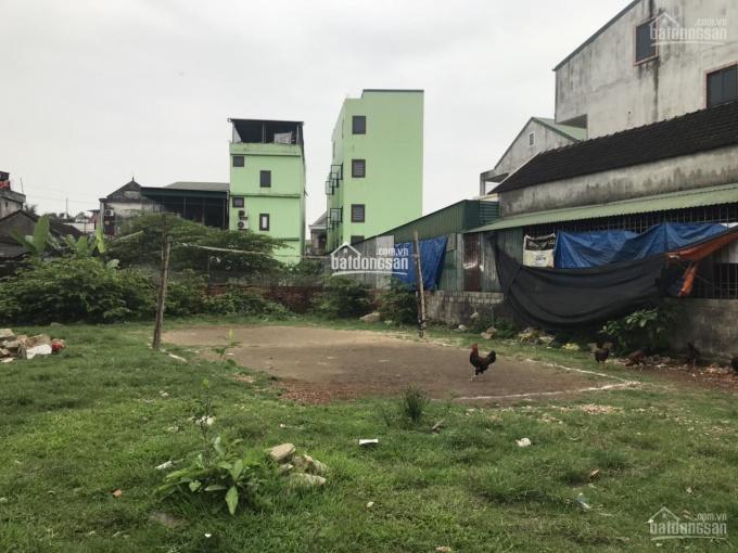 Bán đất ở gần Vincom Plaza, P. Hà Huy Tập, TP Hà Tĩnh 368m2 chỉ 2. X tỷ. LH: 0986.759.425 chính chủ ảnh 0