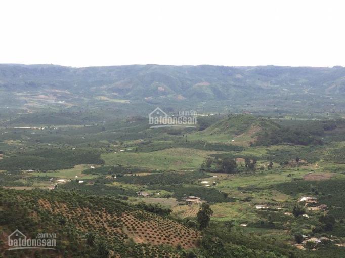 Cần tiền mở công ty bán gấp 30 nền đất thổ cư giá chỉ 880tr/nền tại TP Bảo Lộc, Lâm Đồng ảnh 0