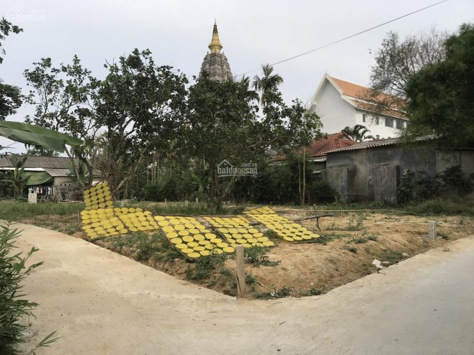 Đất 116m2 Nguyễn Trọng Nhân - Hương Hồ ảnh 0