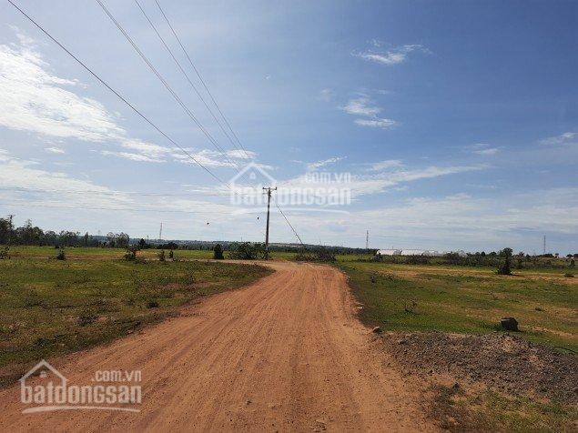 Bán đất 12,679m2 giá 890tr, mặt đường rộng 20m SHR ảnh 0