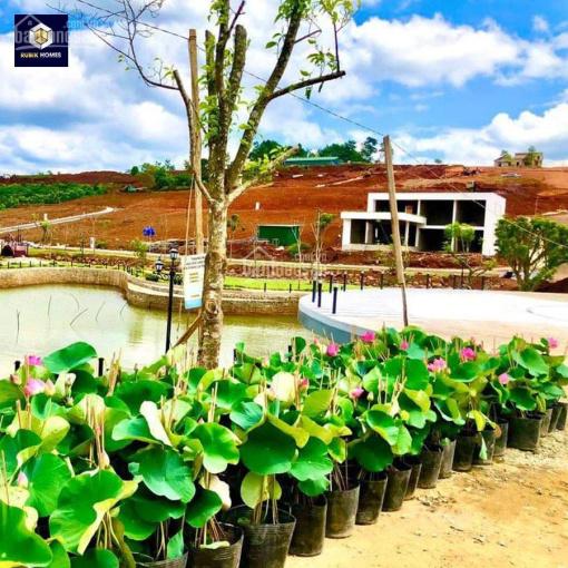 Đất nền nghỉ dưỡng Bảo Lộc, view đồi ảnh 0