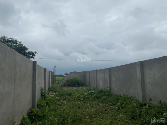 Bán đất phân lô đầu tư sinh lời tại xã Ninh Sở - Thường Tín - Hà Nội ảnh 0
