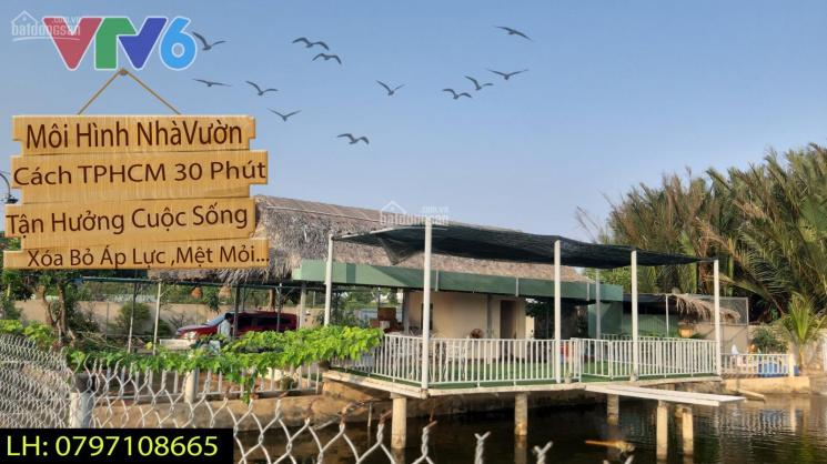 Bán nhà vườn sinh thái 1711m2, xe hơi vào tới nhà, có sẵn ao cá, cây trồng, bồ câu, nhà ở ảnh 0