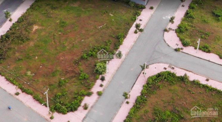 Bán đất sổ riêng KDC Bình Thắng, đường Châu Thới, phường Bình Thắng, DT 85m2. 0962502538 ảnh 0