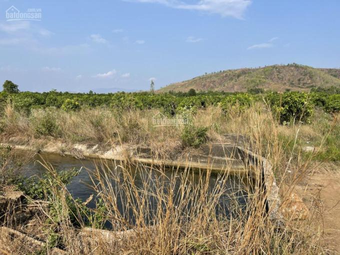 Chính chủ cần bán 3 lô đất vị trí đẹp tại huyện Bắc Bình tỉnh Bình Thuận ảnh 0