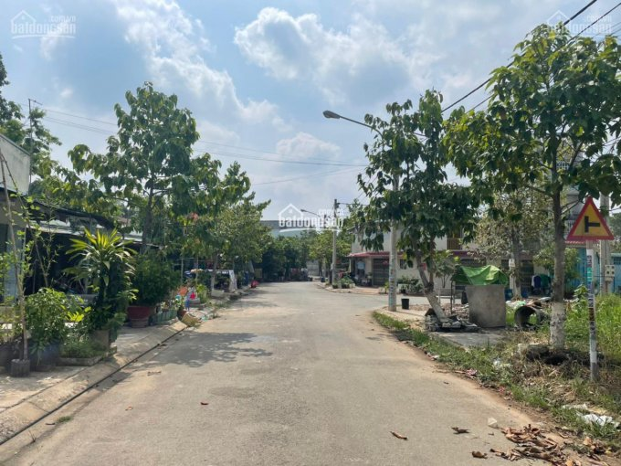 Bán đất 100m2, sổ sẵn đường Dương Bạch Mai, Tân Mai, BH, gần chợ Tân Hiệp, 0773530849 ảnh 0