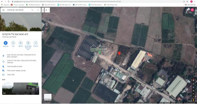 Bán đất thổ 100% đường Xuân Thới Sơn 20C 800m2 (ngang 17m) tại Hóc Môn ảnh 0