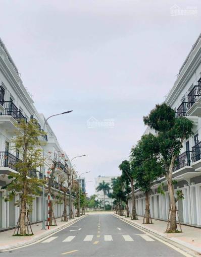 Hot - Vincom Shophouse Thái Hòa chính thức ra mắt nhà đầu tư, số lượng có hạn ảnh 0