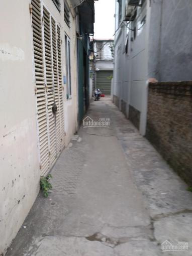 Linh Quy - Kim Sơn: Bán lô đất nhỏ xinh hiếm hoi, thích hợp gia đình nhỏ ít người, dạng hiếm ảnh 0