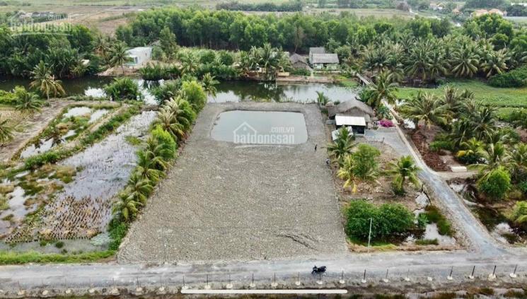 Đất vườn Vĩnh Thanh Nhơn Trạch, ngay Vành Đai 3, giá 1,2 tỷ-1,4 tỷ/1000m2 đường ô tô, sổ hồng riêng ảnh 0