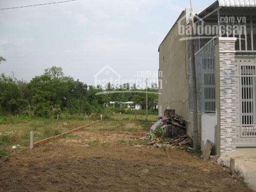 Đất đường Nguyễn Kim Cương, Tân Thạnh Đông 170m2 giá 1.9 tỷ sổ riêng, dân cư hiện hữu LH 0799566660 ảnh 0