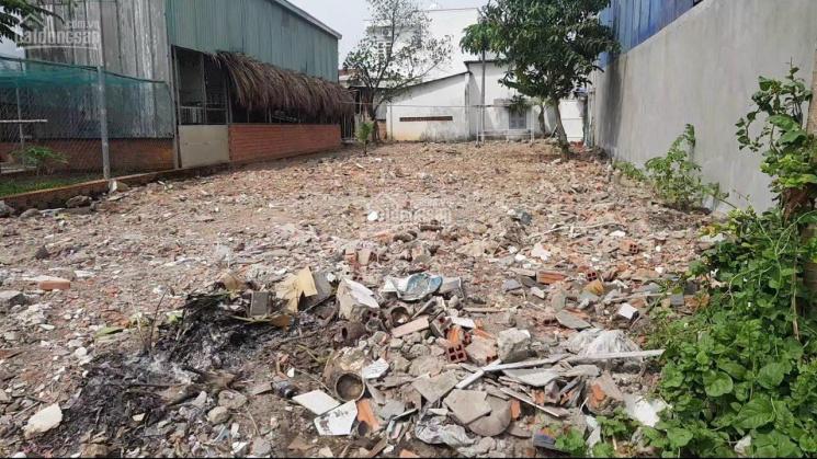 Bán gấp đất đường Dương Bạch Mai, Tân Mai, Biên Hòa, Đồng Nai, DT 100m2, SHR, 0702147253 ảnh 0