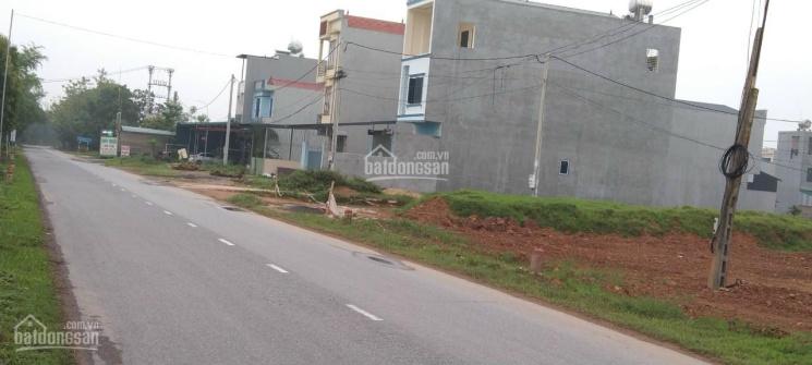 Cần tiền bán nhanh ô đất kinh doanh 2 mặt tiền tại khu phân lô rau sạch Minh Quang, Tam Đảo ảnh 0