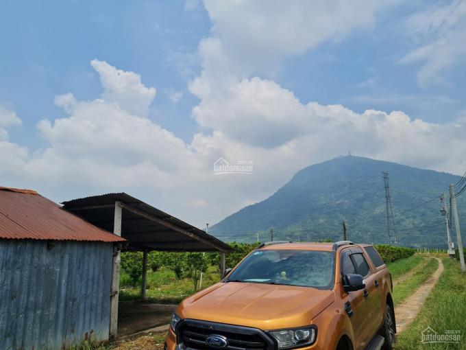 Bán đất rộng đẹp gần núi Bà Đen, Tây Ninh (4 ha) ảnh 0