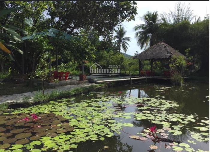 Chính chủ bán nhanh lô đất Vạn Ninh, view biển đang kinh doanh cafe nhà hàng ảnh 0