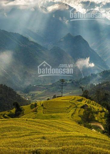 Đất nền trung tâm văn hoá bảo tồn dân tộc Hà Nhì, xã Y Tý, Bát Xát, Lào Cai ảnh 0