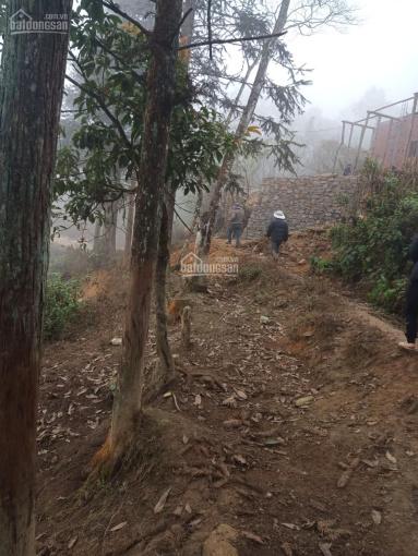 Bán nhanh lô đất 589m2 Sín Chải, đang làm sổ, quy hoạch đất ở Y Tý ảnh 0