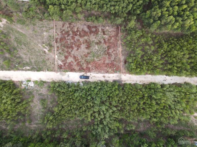 Bán lô đất sau Swan Park, gần Vành Đai 3, giá đầu tư, LH: 0356.346.379 ảnh 0