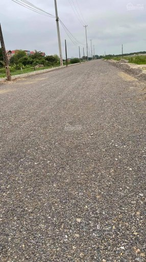 Bán đất Đảo Cò Chi Lăng Nam, ngay đường tỉnh 396 ảnh 0