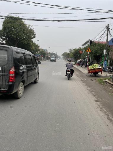 Cho thuê nhà dài hạn mặt đường 351 xã Nam Sơn ảnh 0